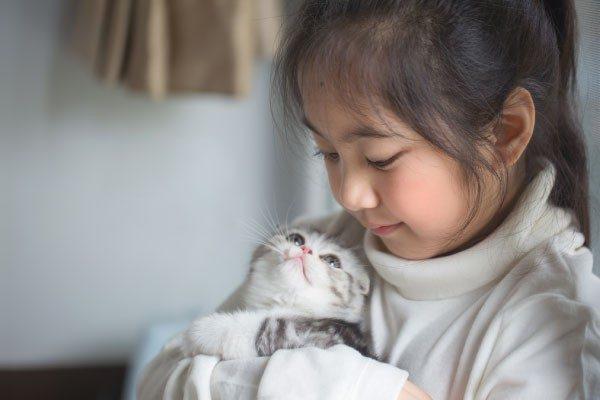 猫のゴロゴロの秘密 猫の気持ちに迫る!